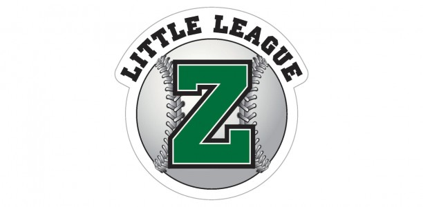 Show Your Support for ZLL with Car Window Decals