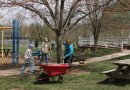 Lions' Park Cleanup Update – No Cleanup on Monday