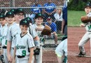 10U Green and 10U White Advance in District 8 Tournament